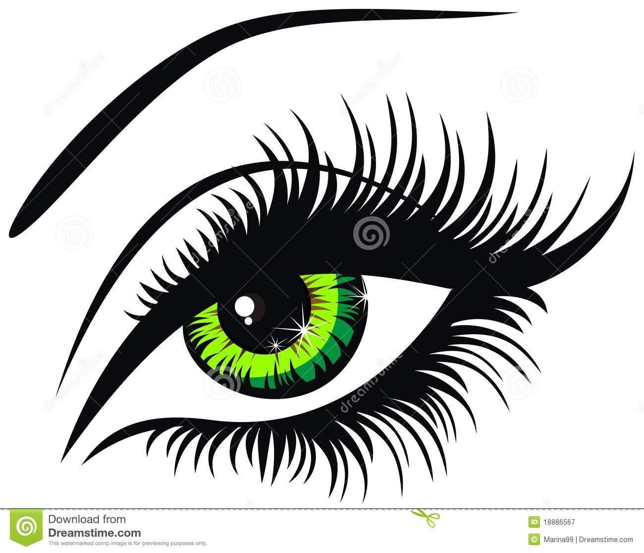 Green eye. Vector illu...