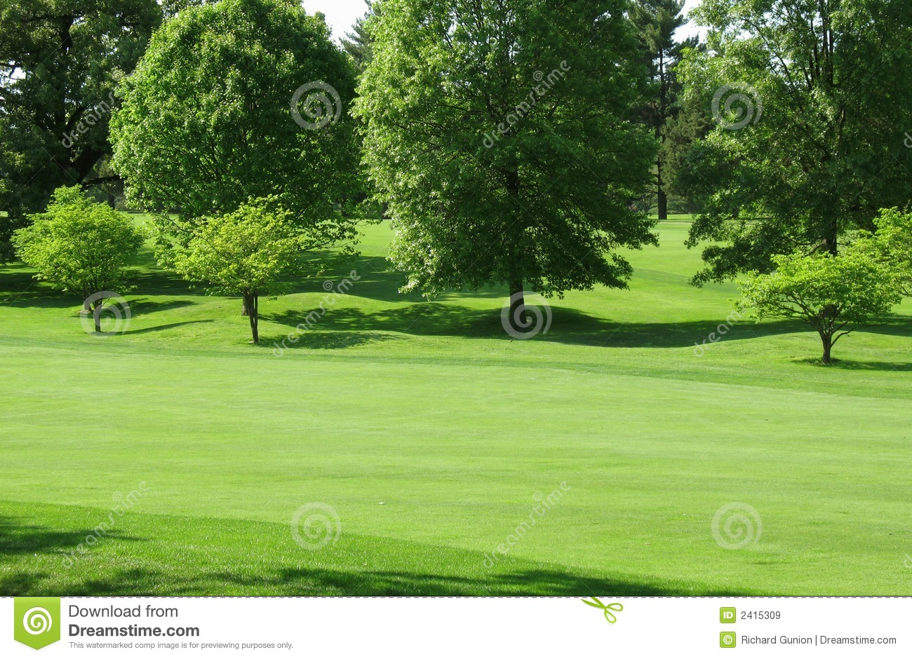 Green Fairway Royalty Free Stock Images Image 2415309