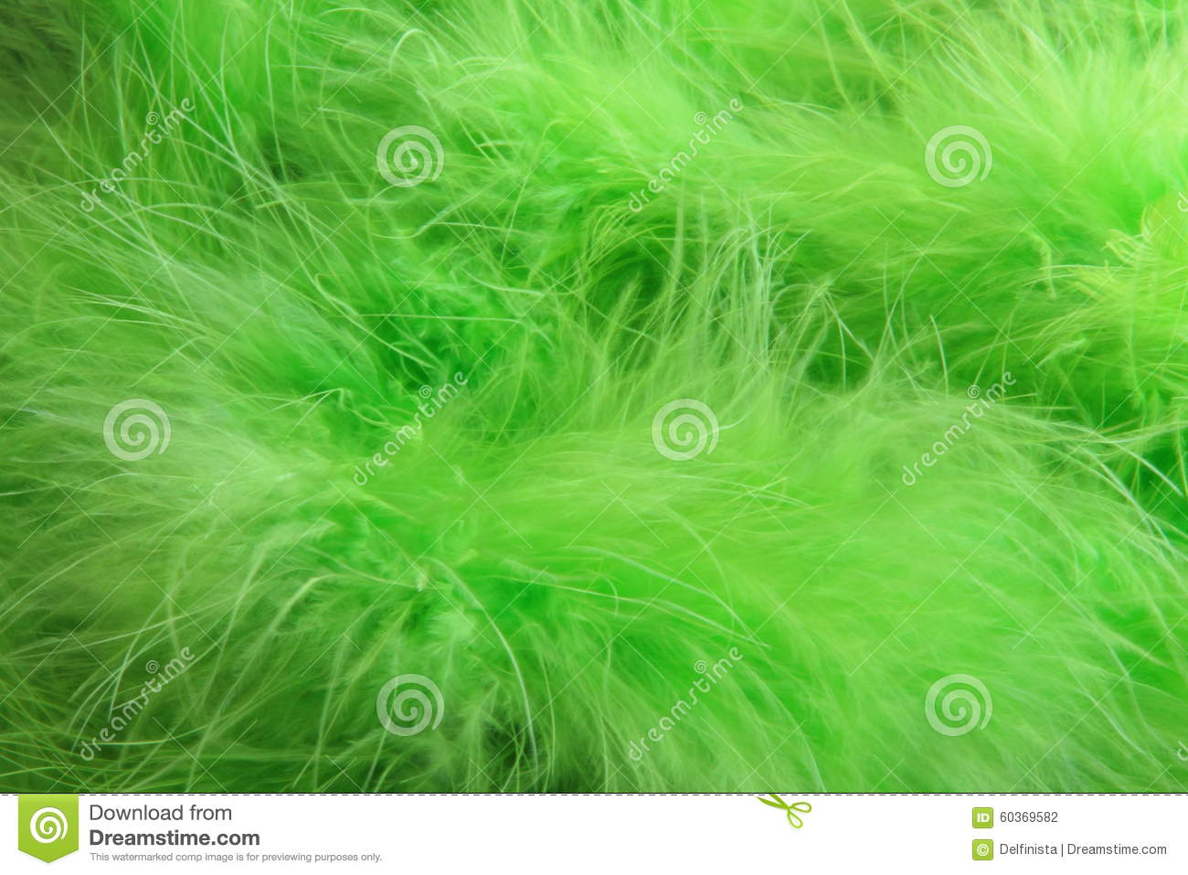Green feathers background - stock photo