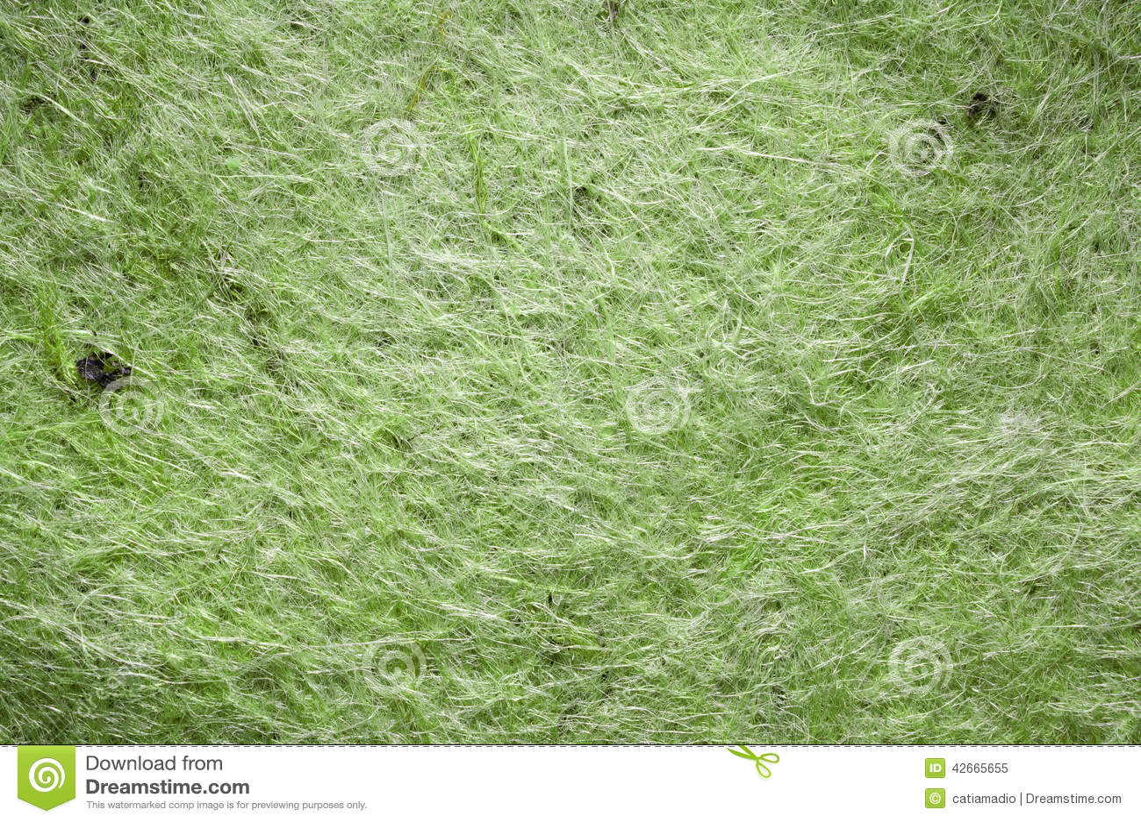 green-felt-texture-closeup-surface-backg