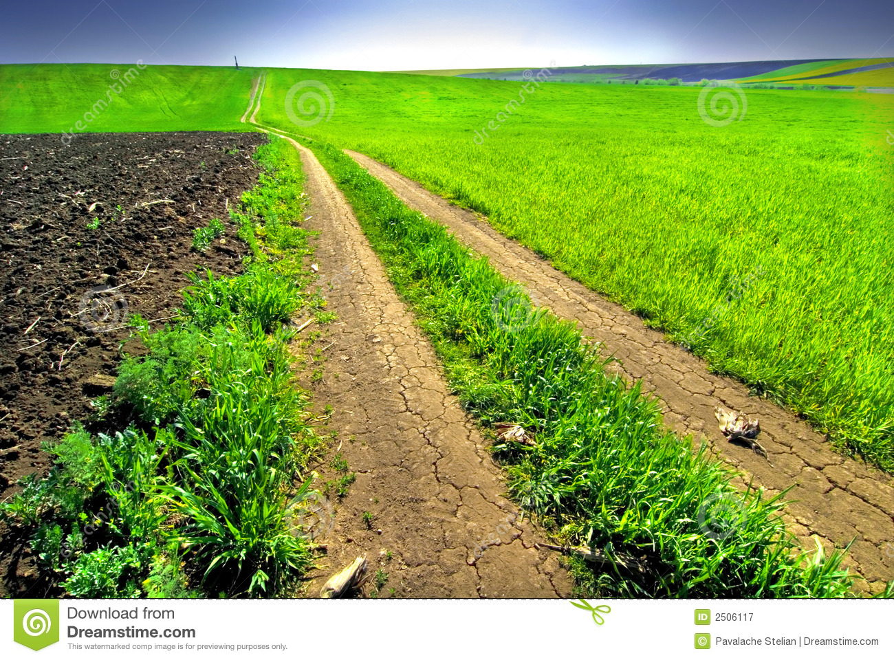 Dirt lane in the middle of a farming area with a green field on one ...
