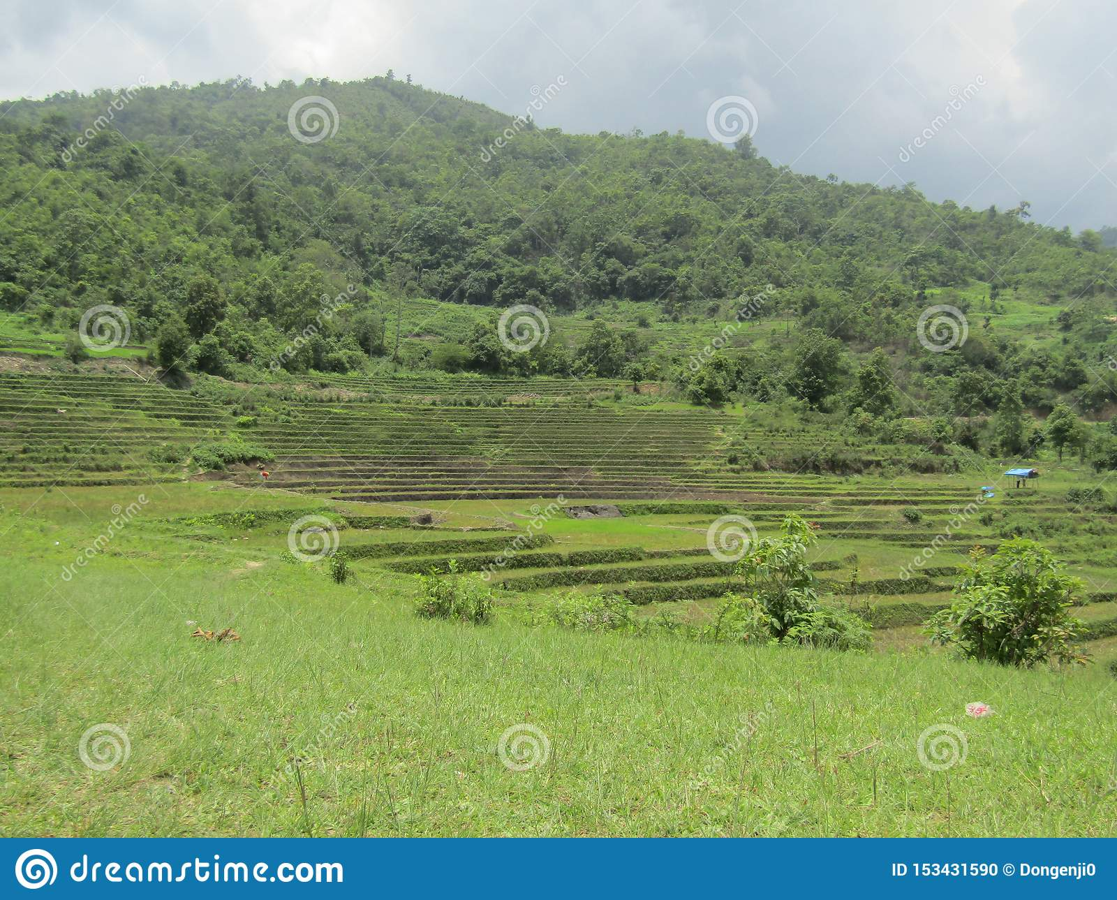 Green field in the mid of mountains
