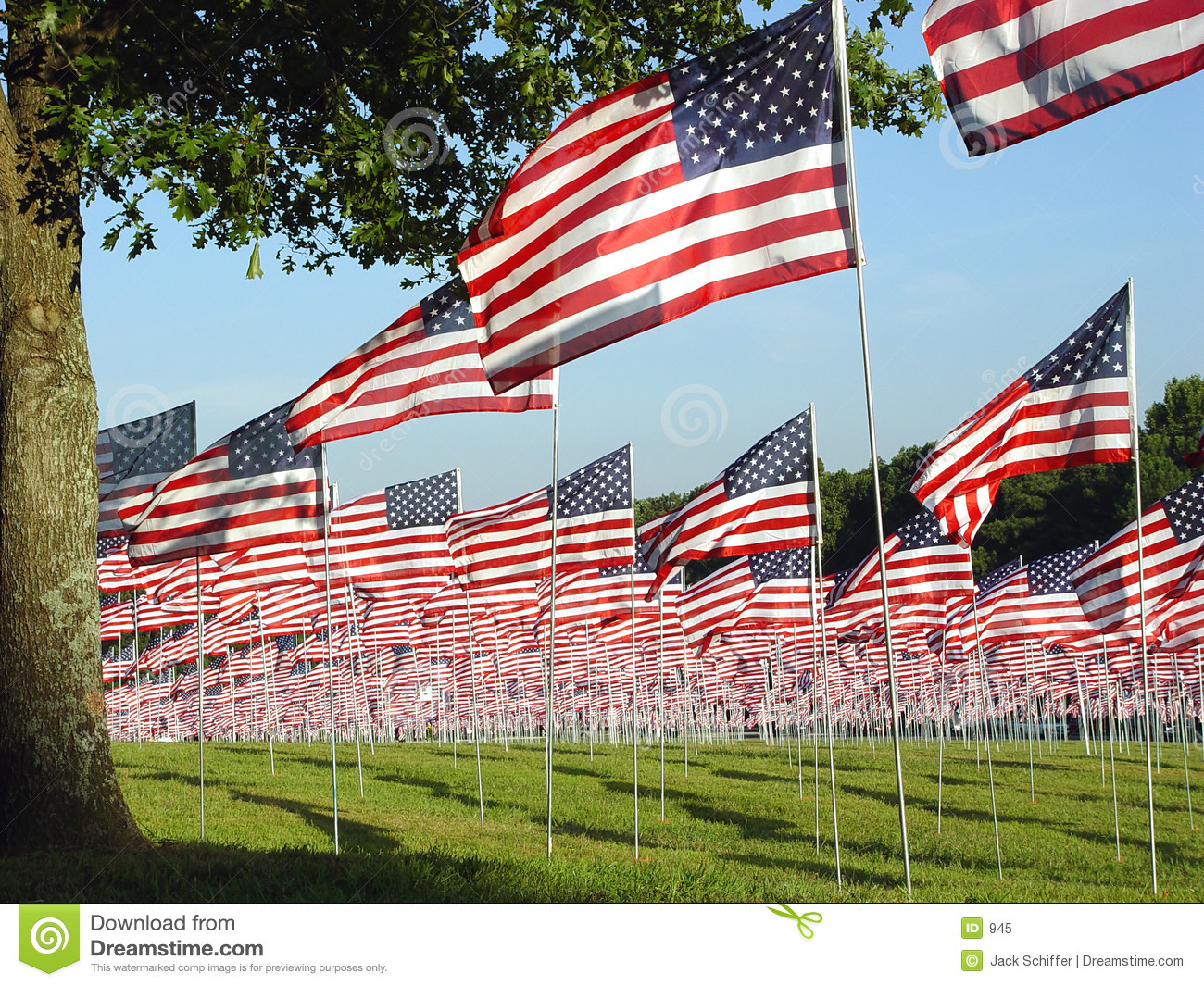 Green Filed with Many American Flags