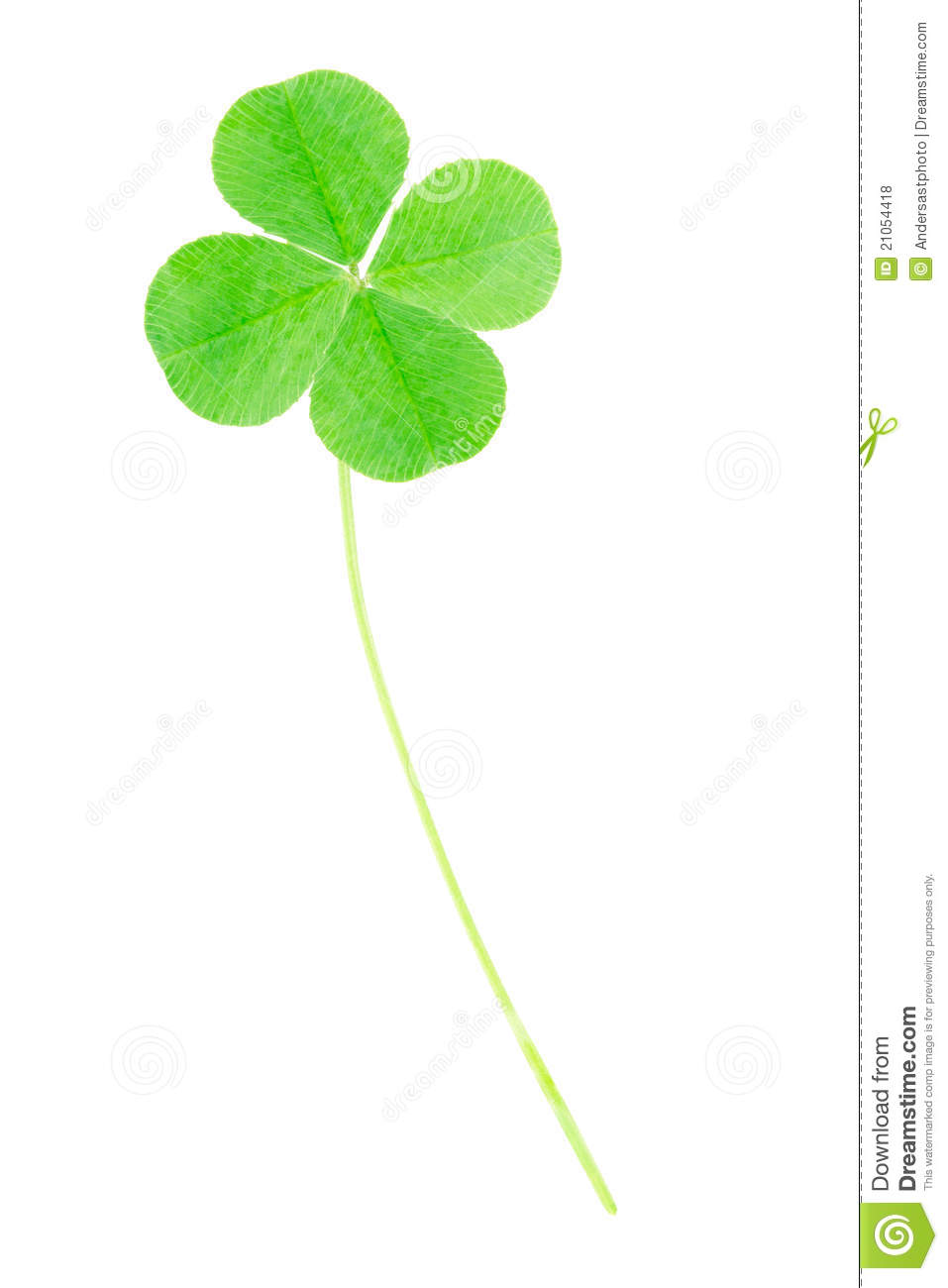 green four leaf clover royalty free stock photos image 21054418