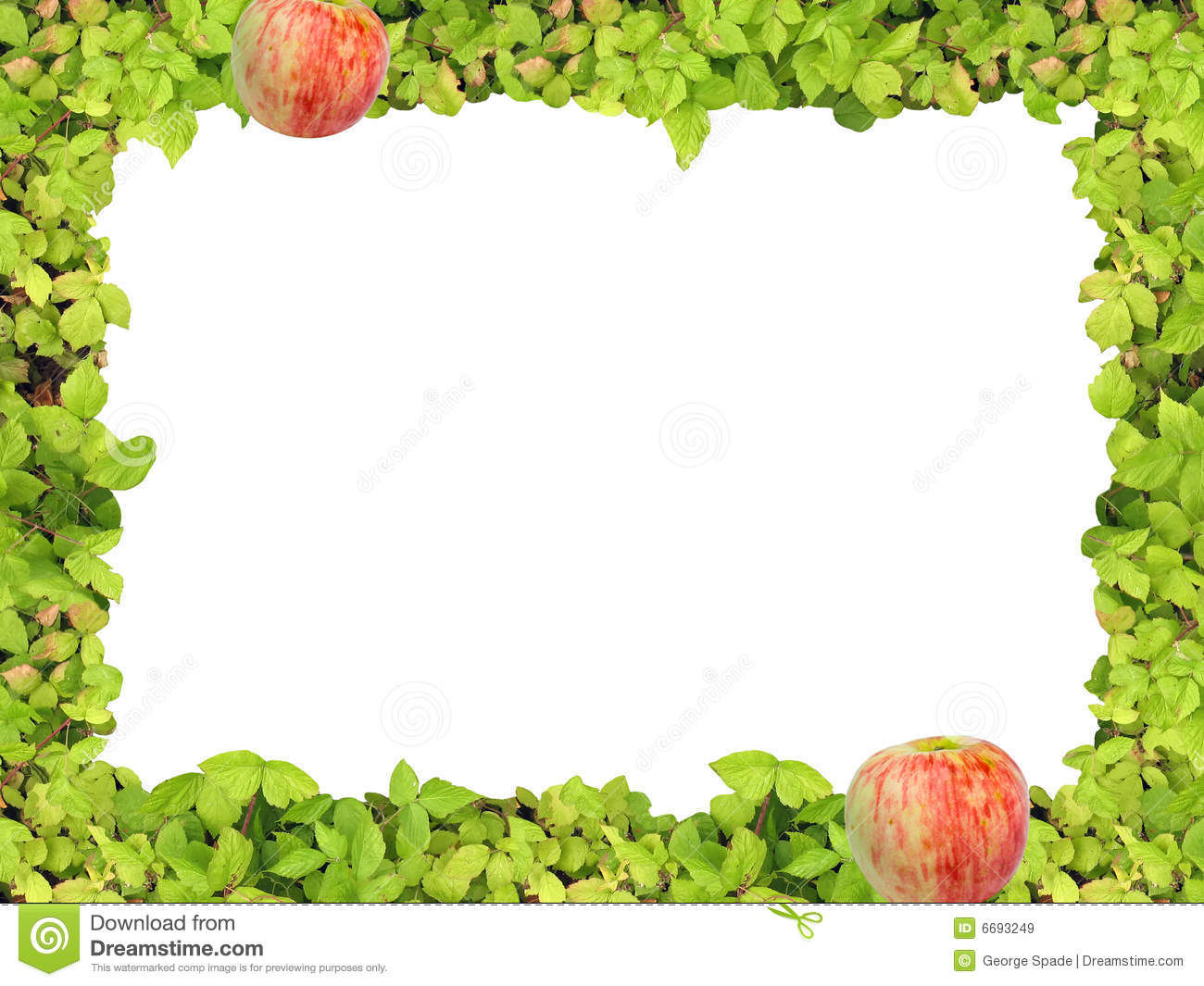 Apple picture frame for Pictureframes net