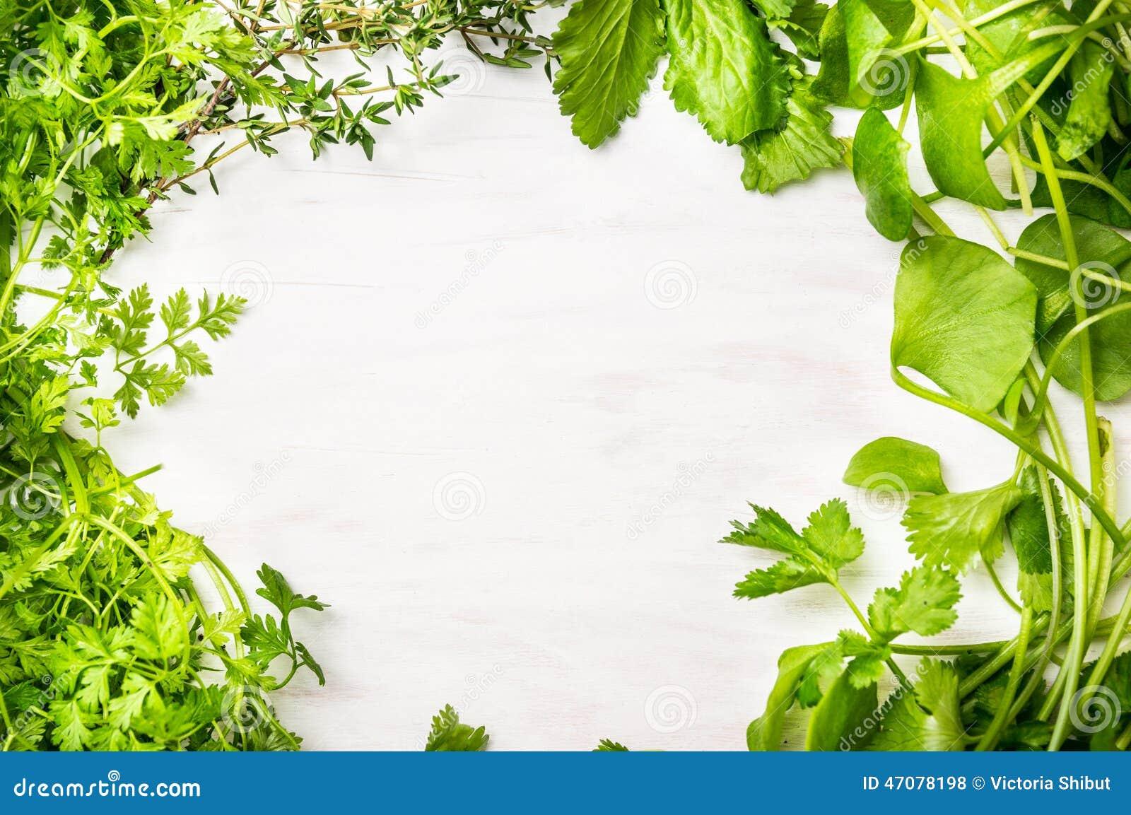 Green Fresh Herbs Mi