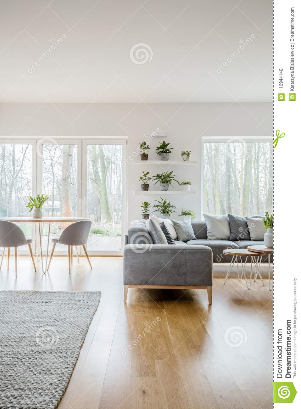 Green Fresh Plants In Pots Placed On Shelves In White Living Room