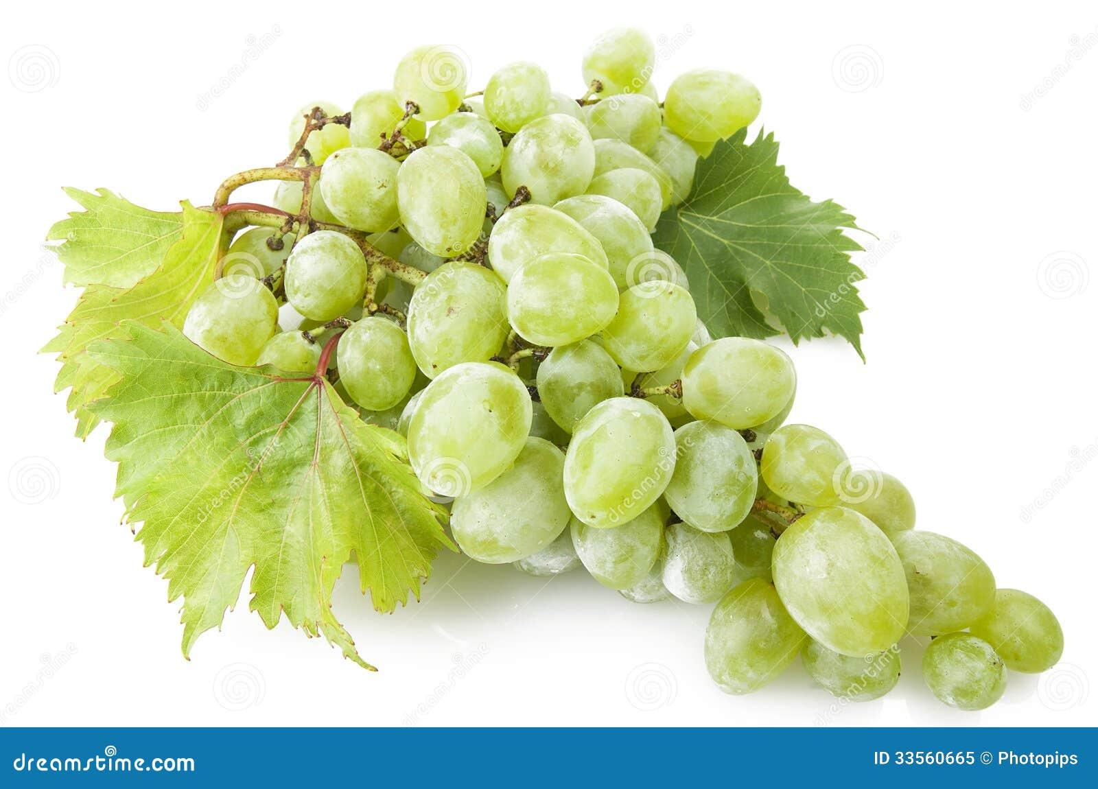 Green freshness grape