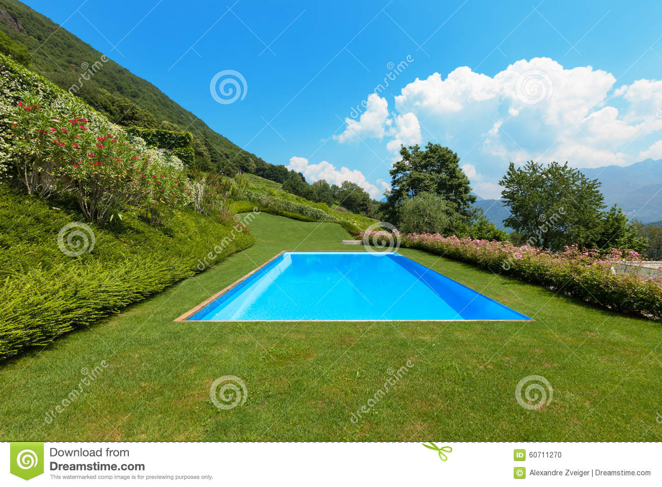 Green garden with pool stock photo image 60711270 for Green garden pool jakarta