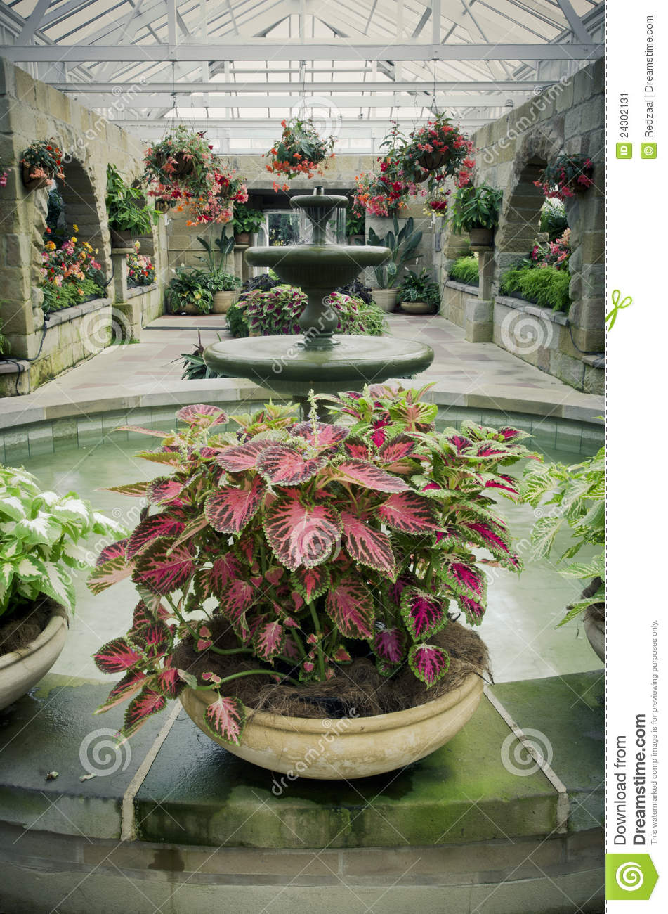 Green garden room with beautiful plants stock image for Green garden rooms