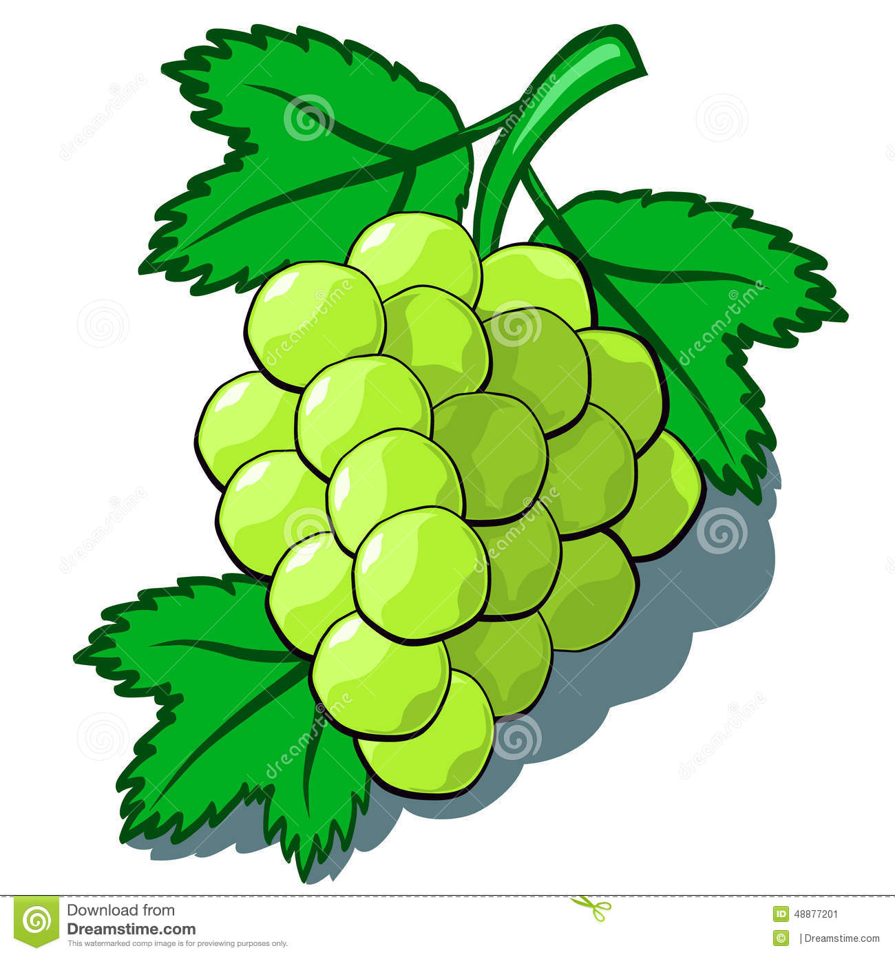 Green Grapes stock vector. Illustration of green, nature - 48877201 for Grapes Animated  110zmd