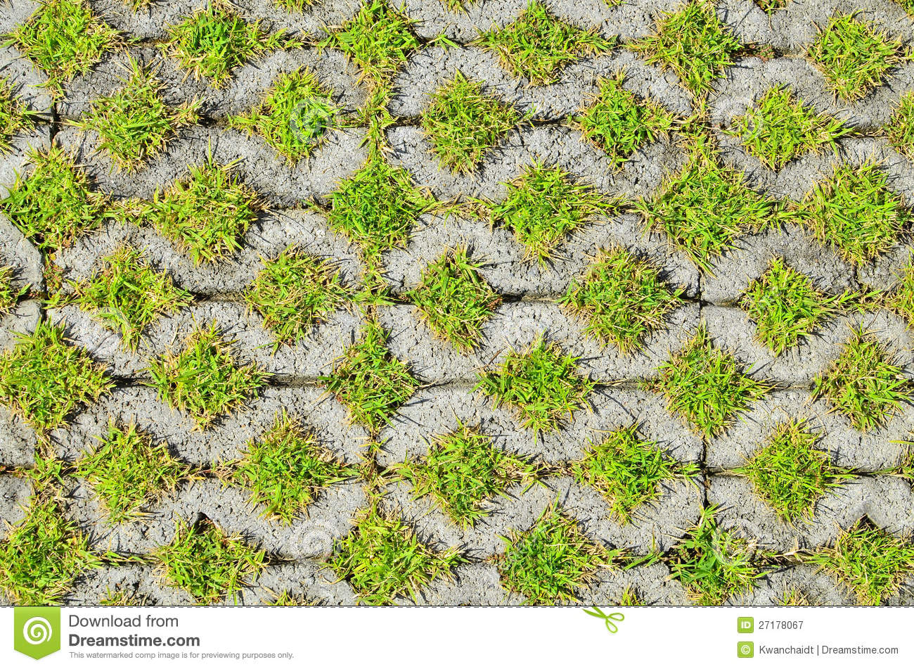 Green Grass In The Block Brick Stock Image Image Of