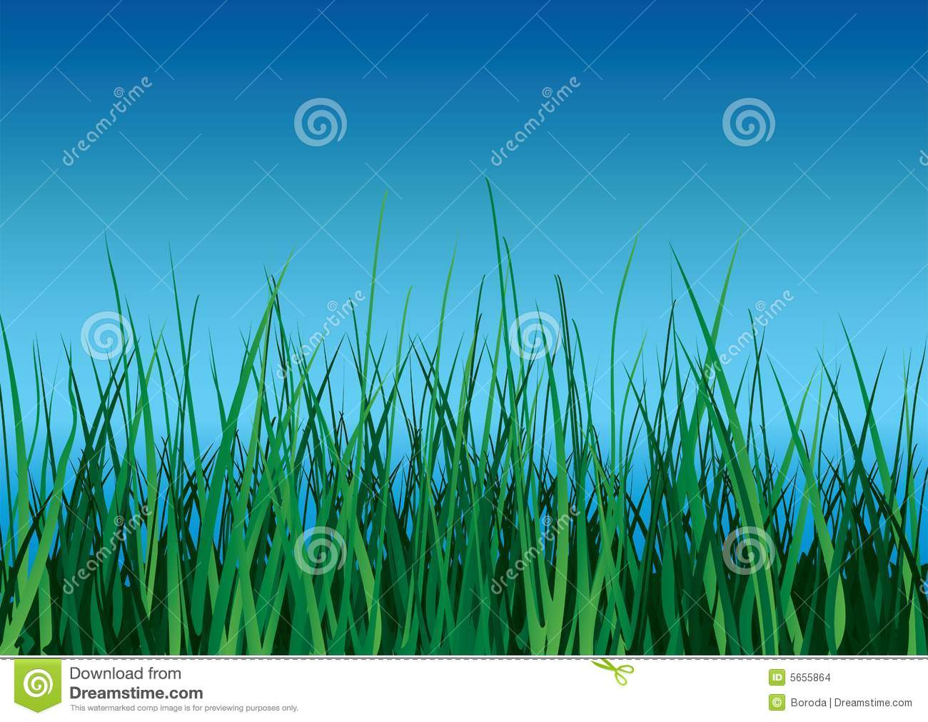 Green Grass On Blue Sky. Stock Images - Image: 5655864
