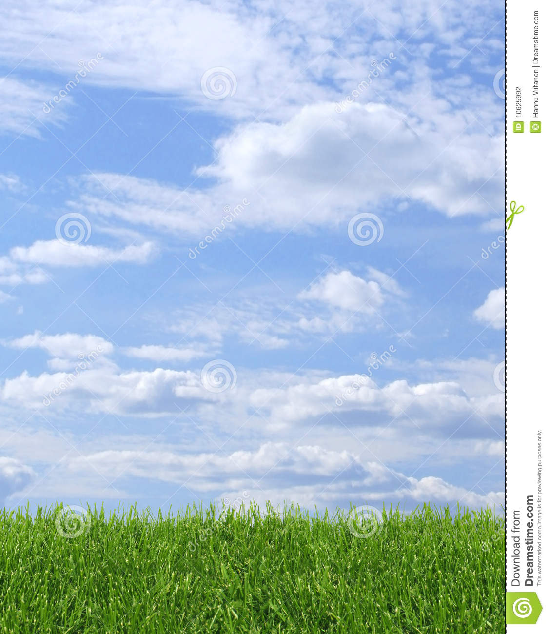 Green Grass Blue Sky Background Stock Photography - Image ...
