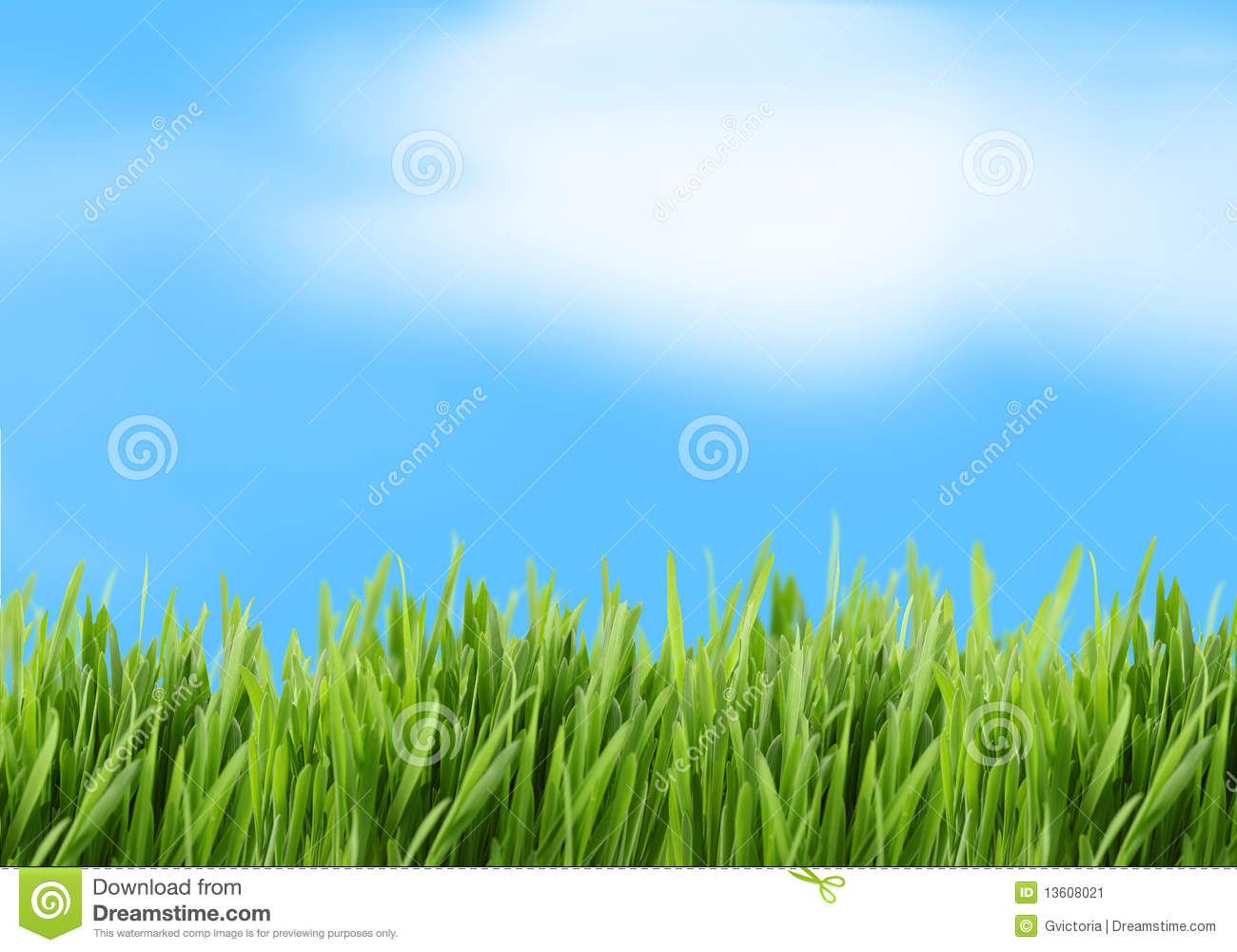 Green Grass And Blue Sky Background Stock Image - Image ...