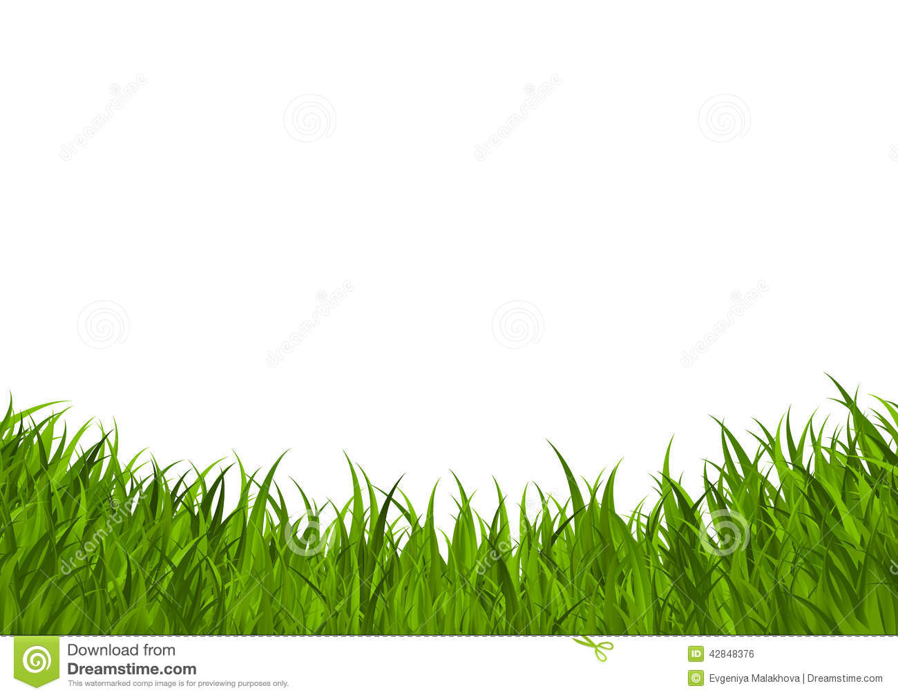 Green grass border stock vector image 42848376 for Best grasses for borders