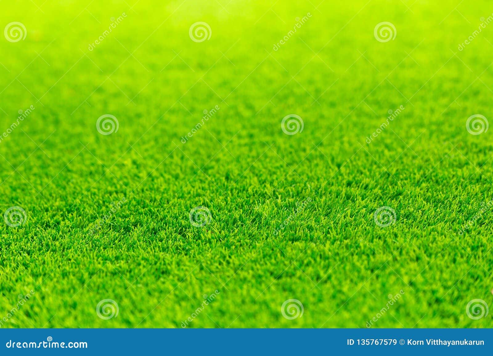 Green grass bright vivid field empty space