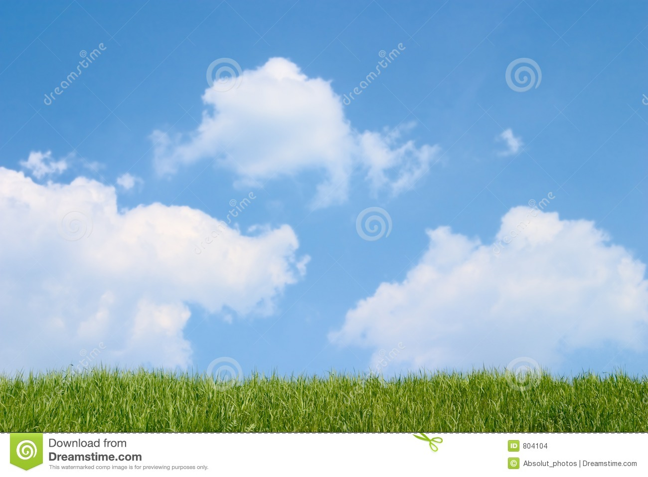 Green grass and cloudy blue sky