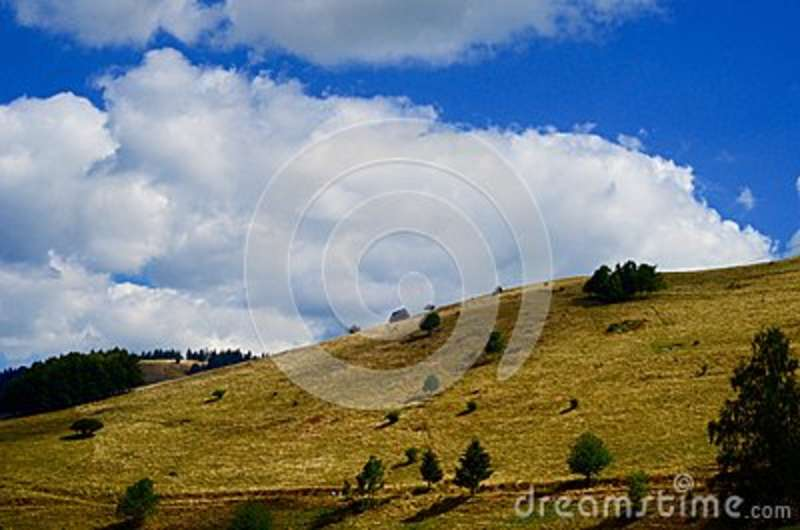 Download Green Grass Covered Mountain With Green Trees Under Blue Cloudy Skies Stock Image - Image of free, grass: 83016213