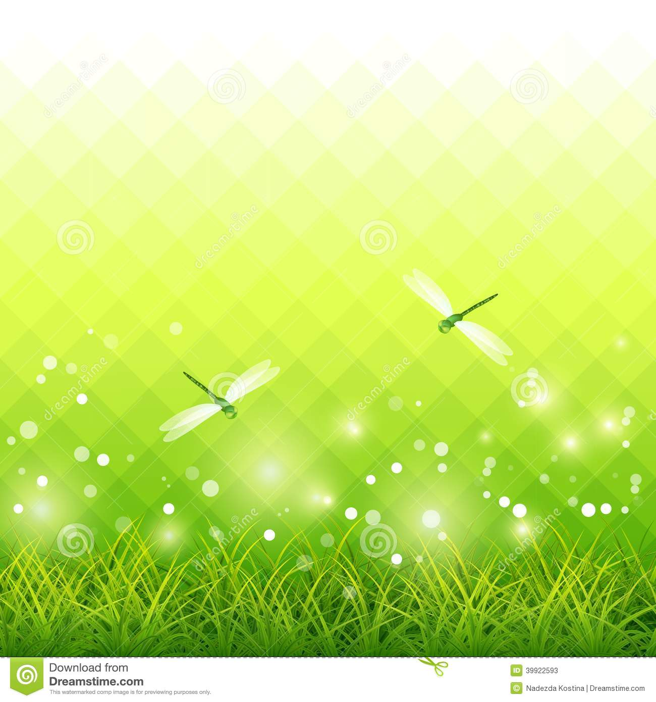 Green Grass Dragonfly Season Background Vector Stock