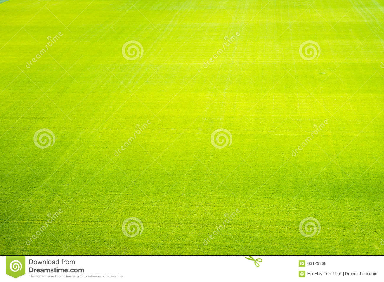 green grass field background texture pattern stock photo