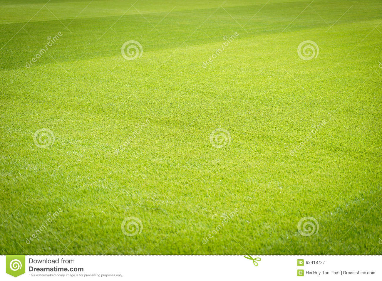 Green Grass Field Background, Texture, Pattern Stock Image - Image