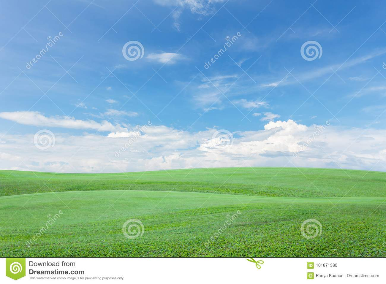 green grass field with clear blue sky and cloud background. stock