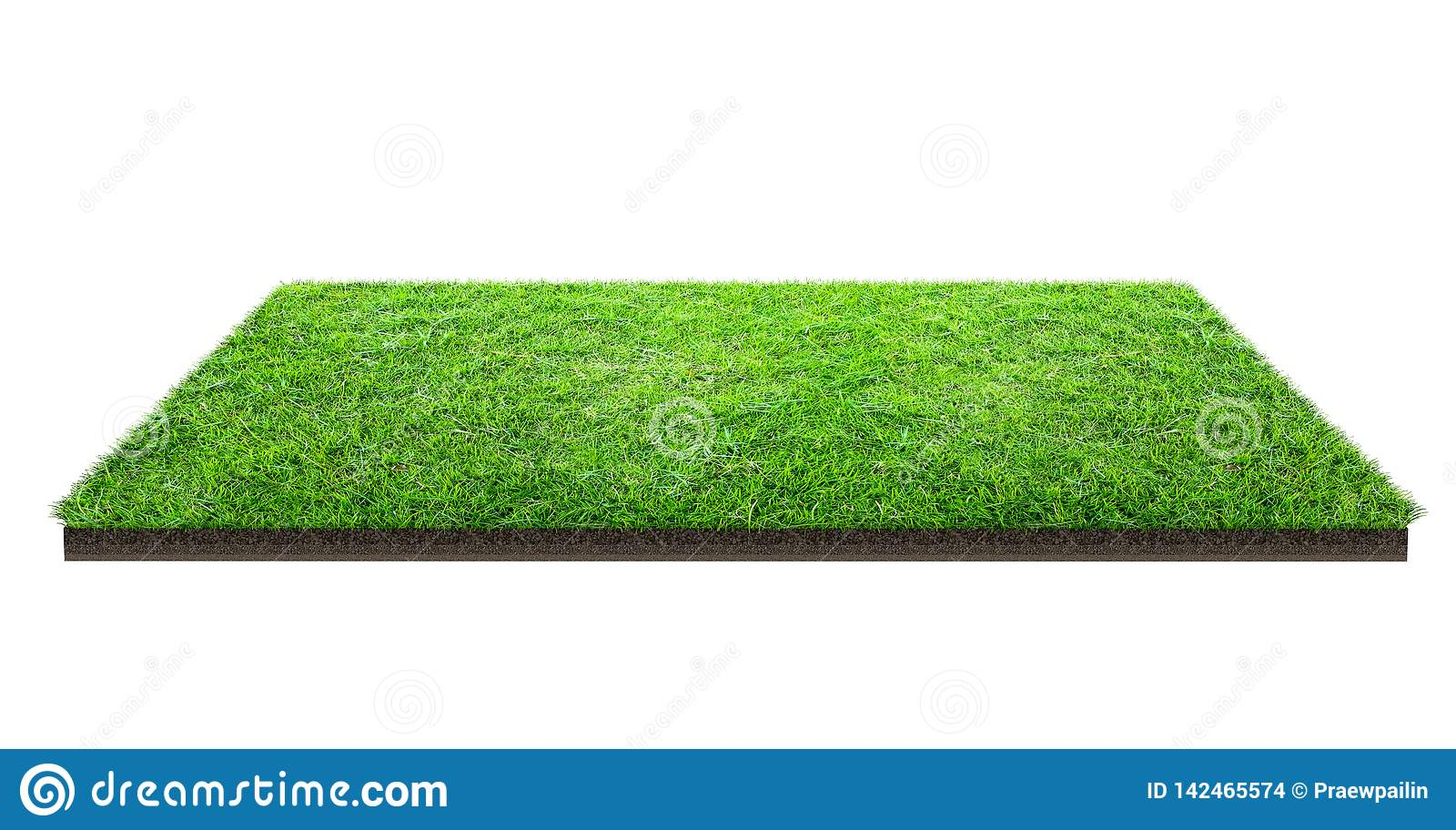 Green grass field isolated on white with clipping path. Sports field. Summer team games