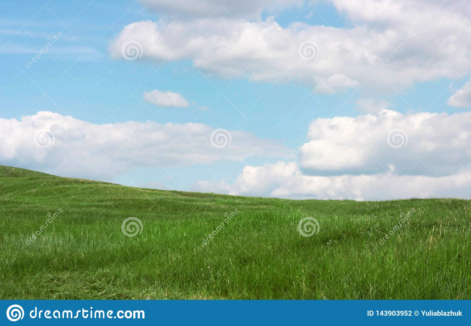 Green grass field landscape with clouds and blue sky