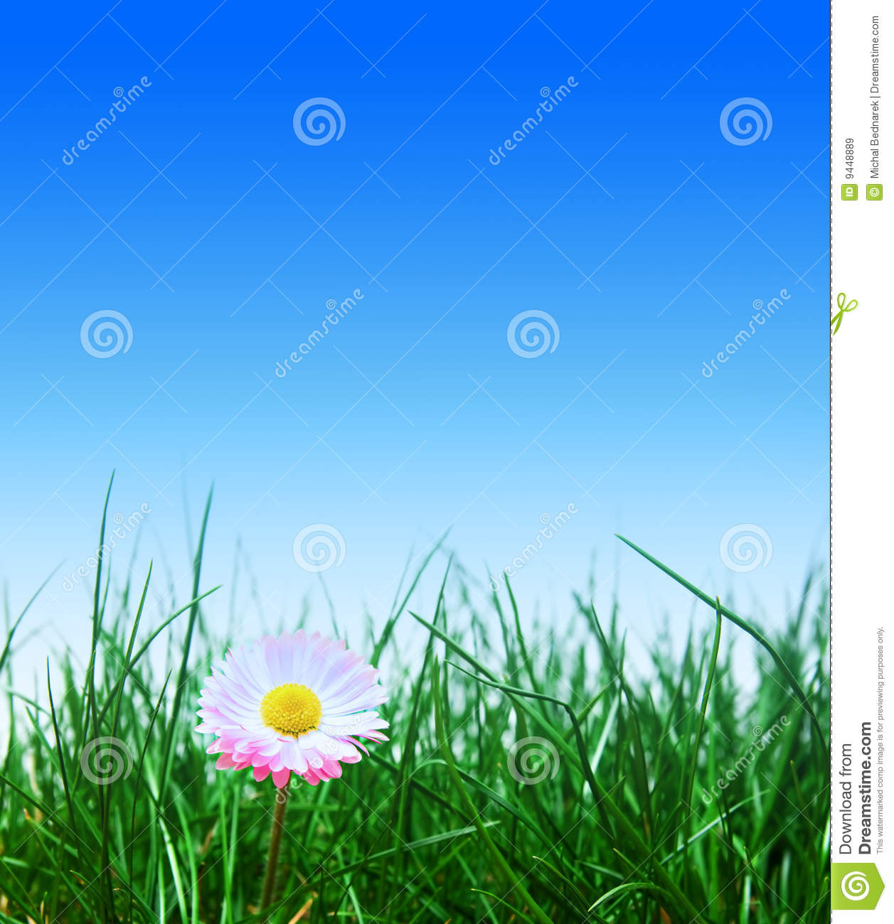 green grass blue sky flowers cloud clipart green grass flower and blue sky grass flower and blue sky stock image of blue meadow