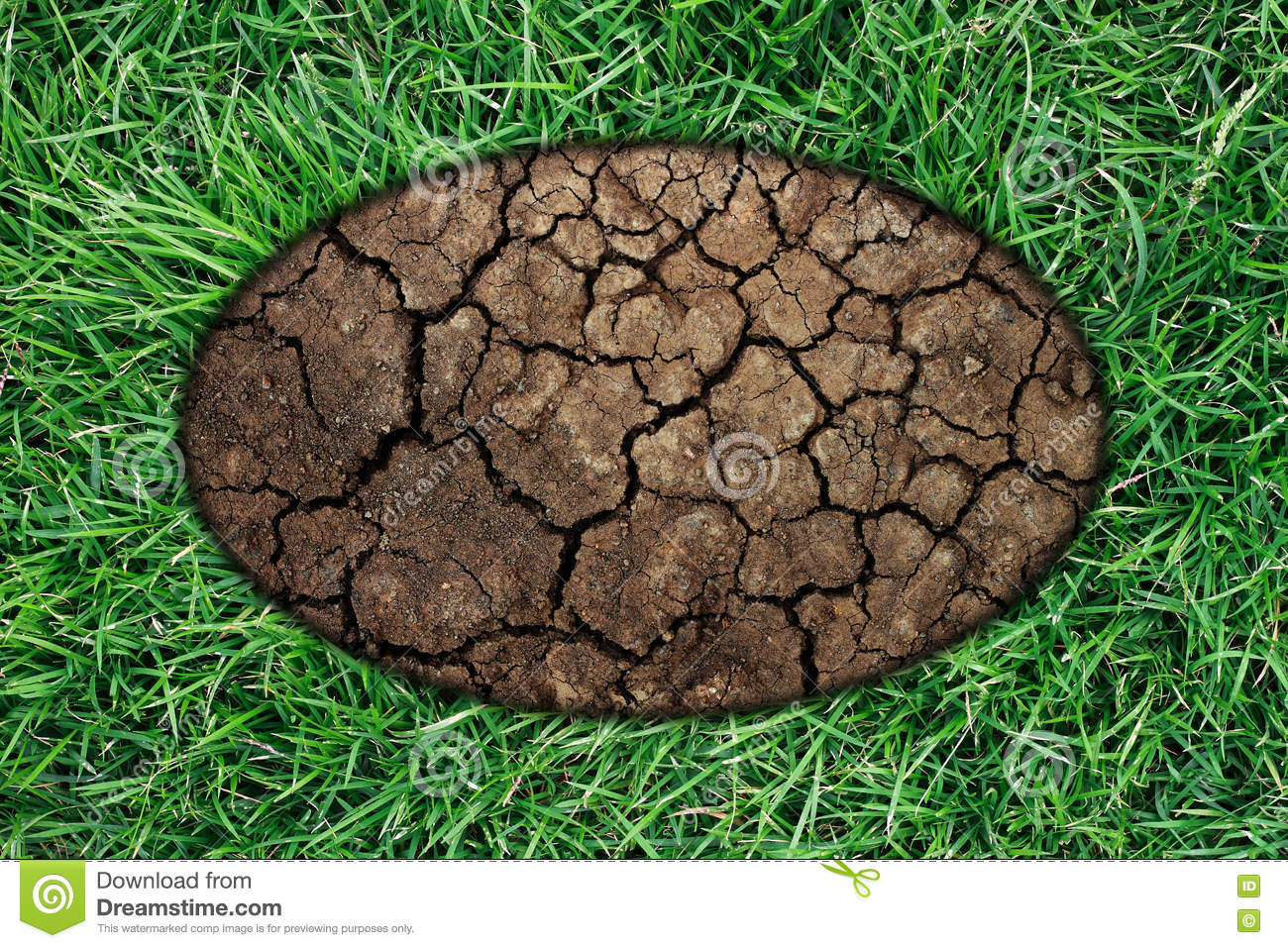 Green grass frame with dry soil stock photo image 70767014 for Soil and green