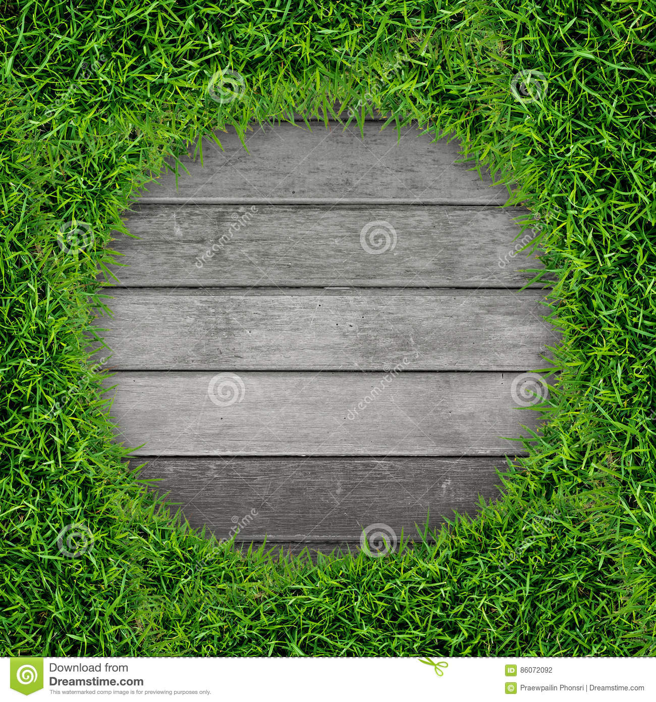 Green grass frame and vintage wood background.