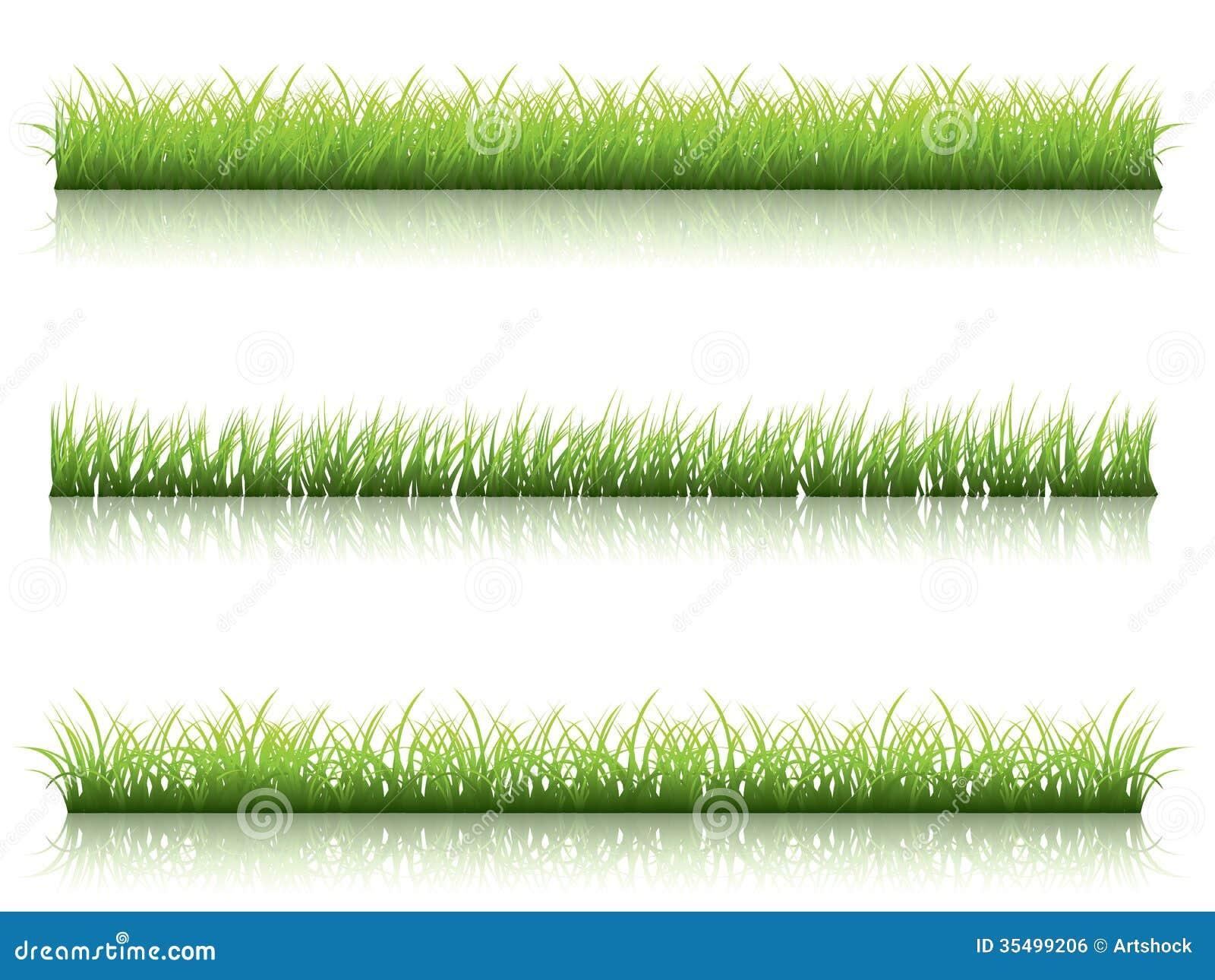 Green grass line