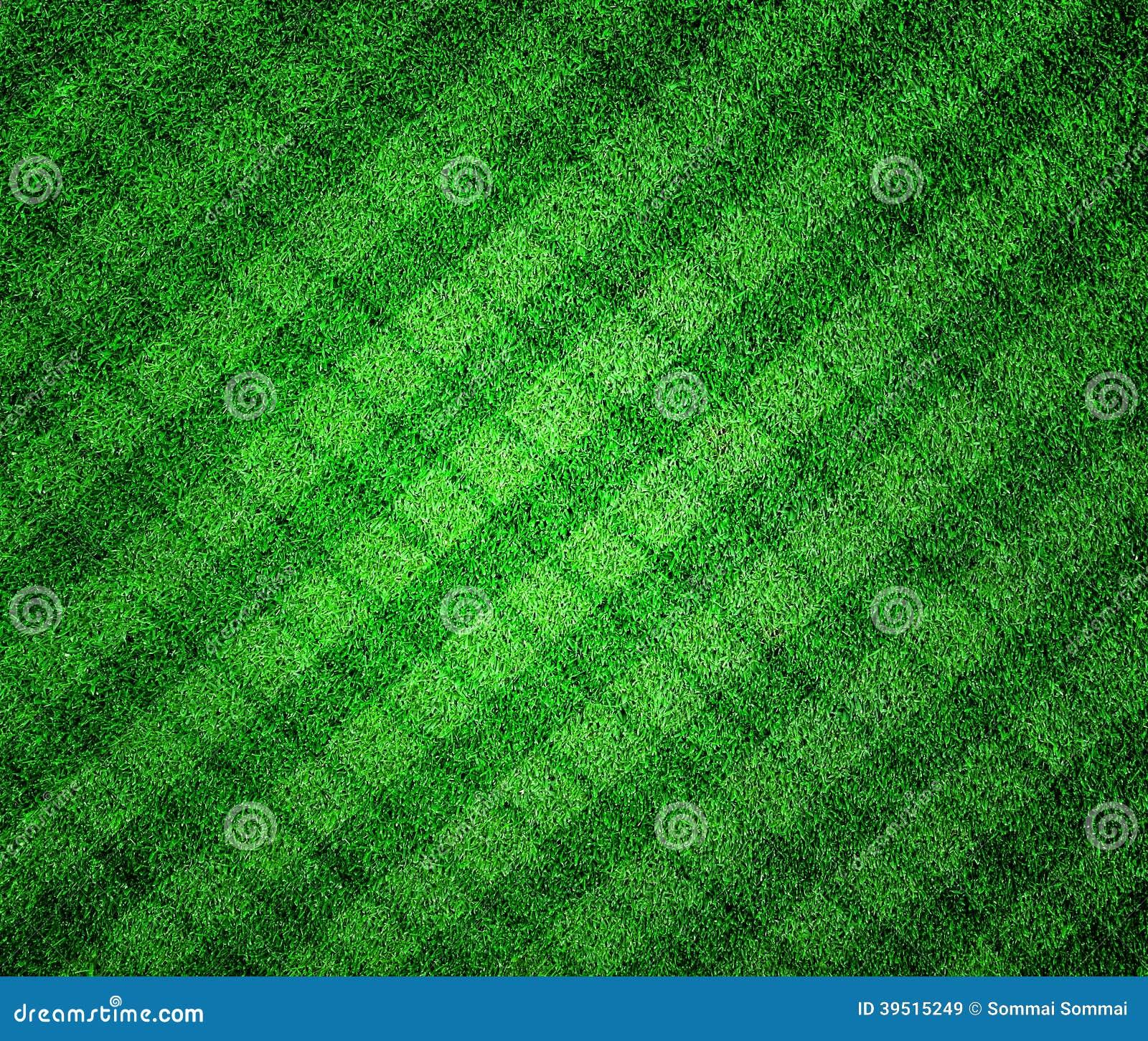 Green grass lined