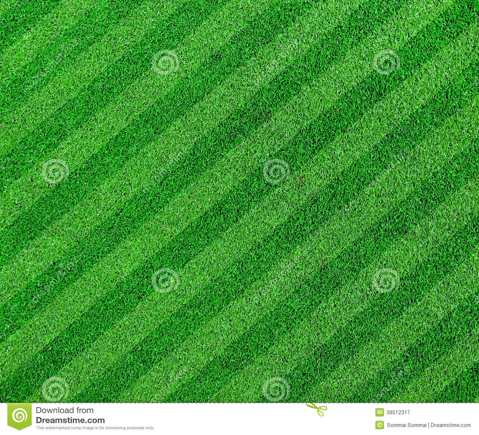 Green grass lined soccer field