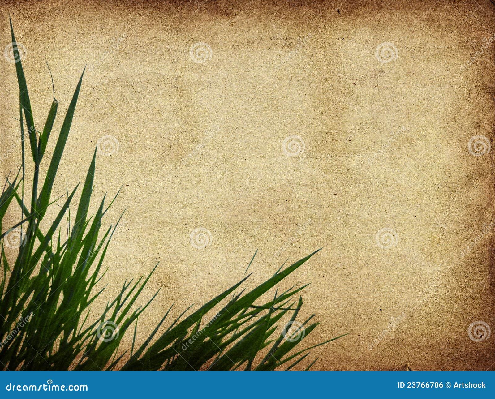 Green grass on paper