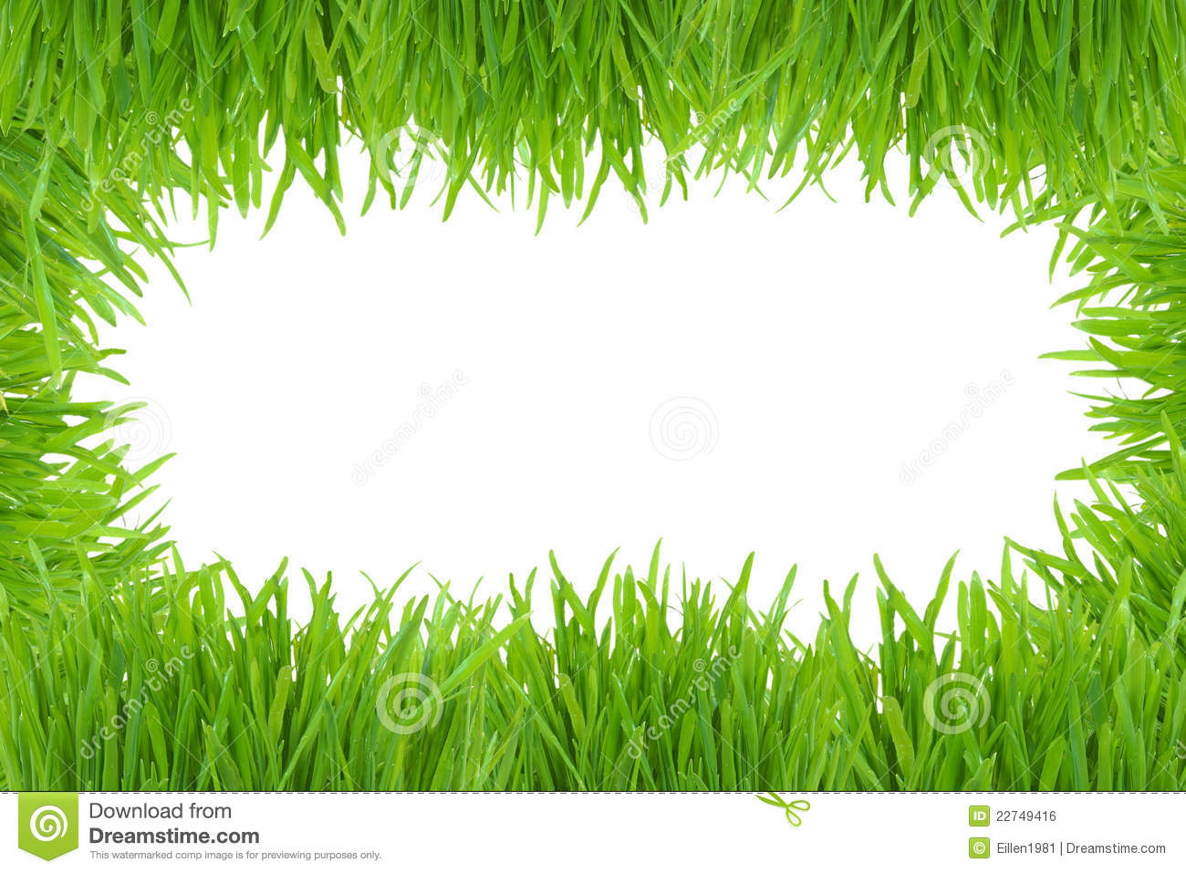 green grass photo frame isolated on white stock photo