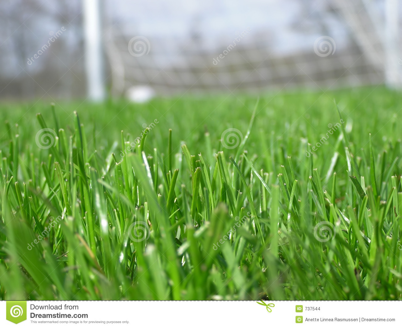 green grass field animated. Green Grass With Soccer Net Field Animated
