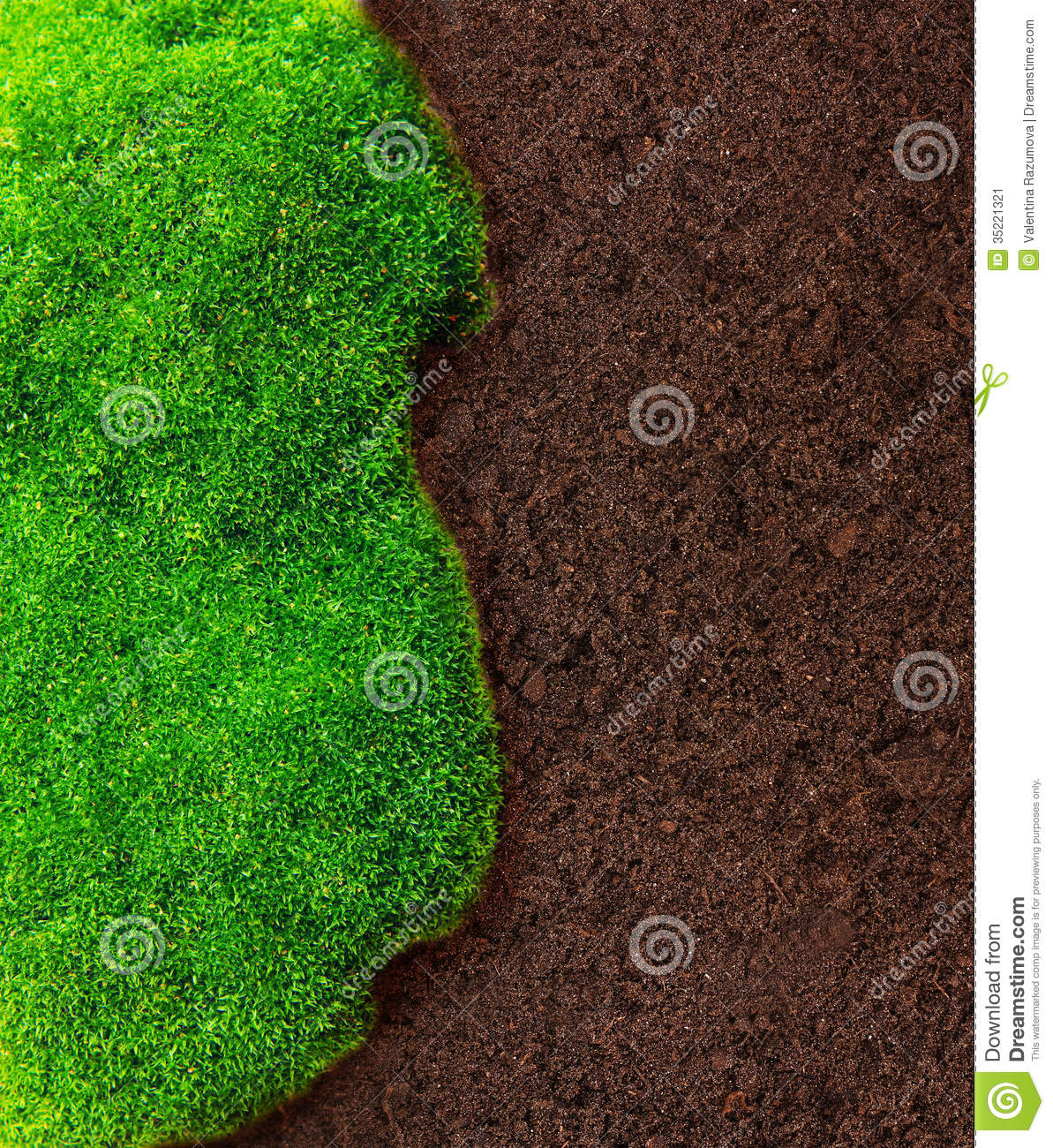 Green grass and soil stock image image 35221321 for Soil and green