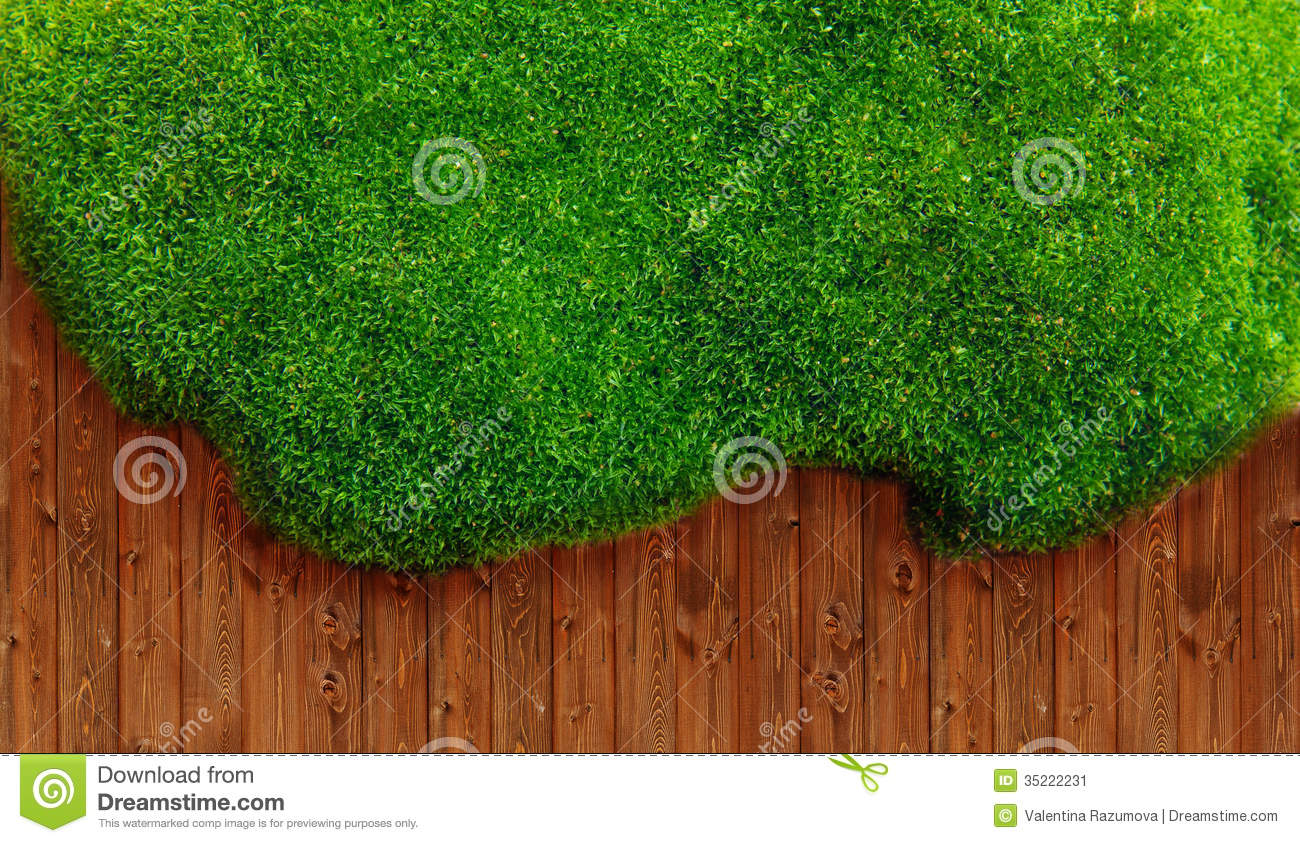 Green grass and soil stock image image 35222231 for Soil and green