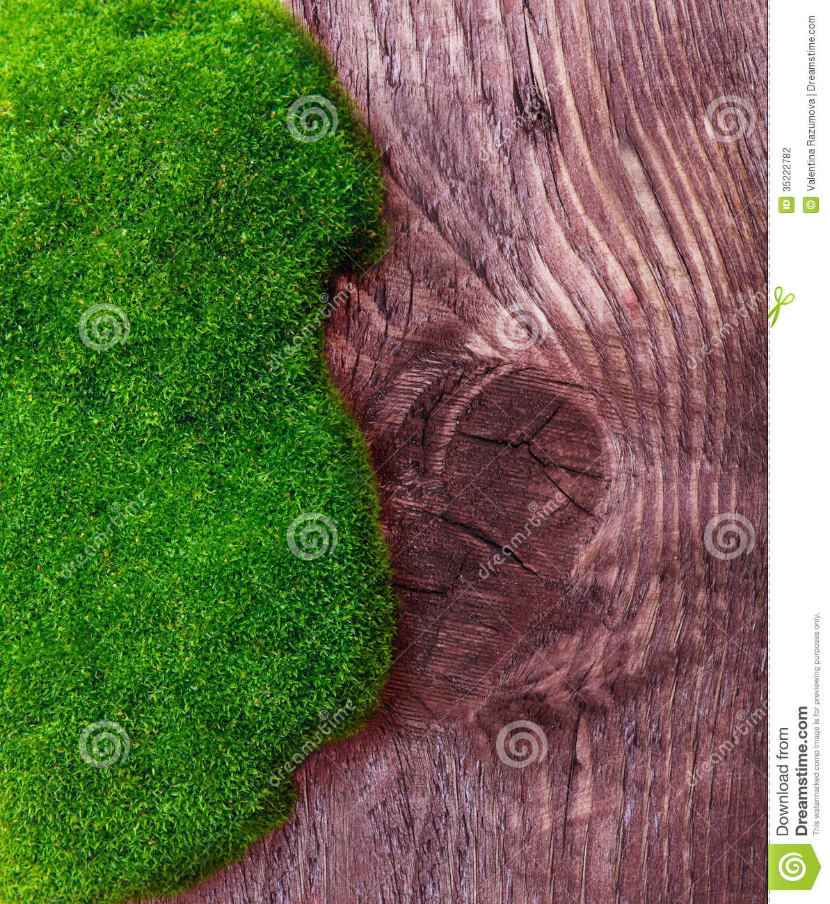 Green grass and soil stock photography image 35222782 for Soil and green
