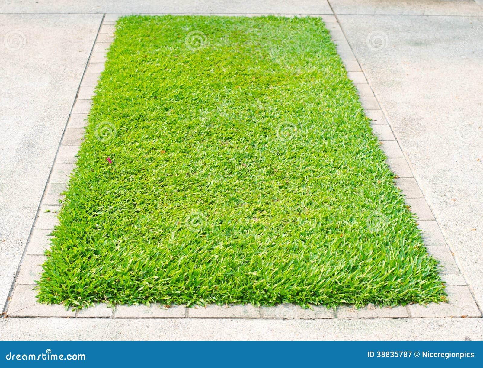 Green Grass On Square Concrete Block Stock Photo Image