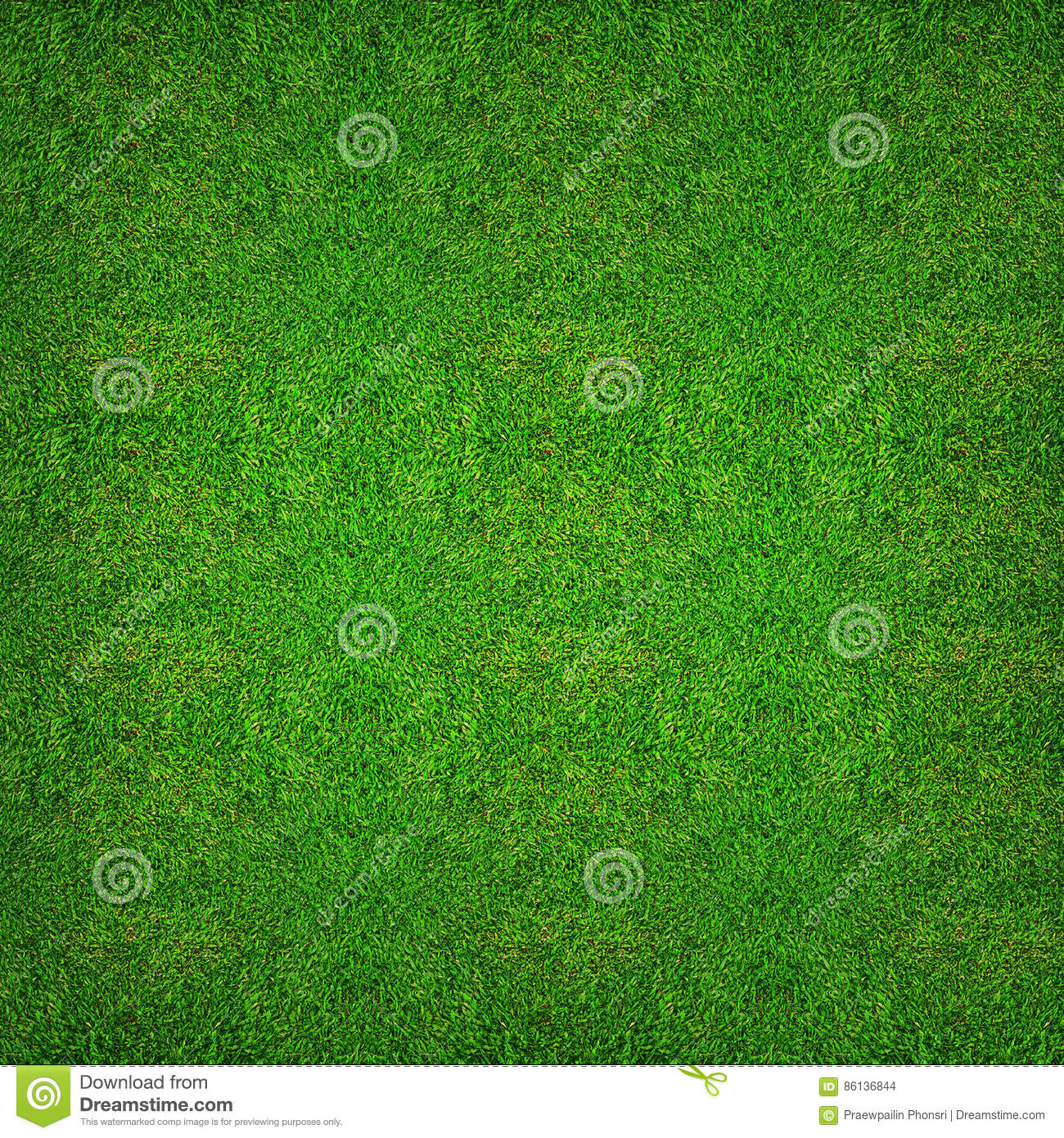 Green grass texture background for soccer sport or football sport and golf sport background.