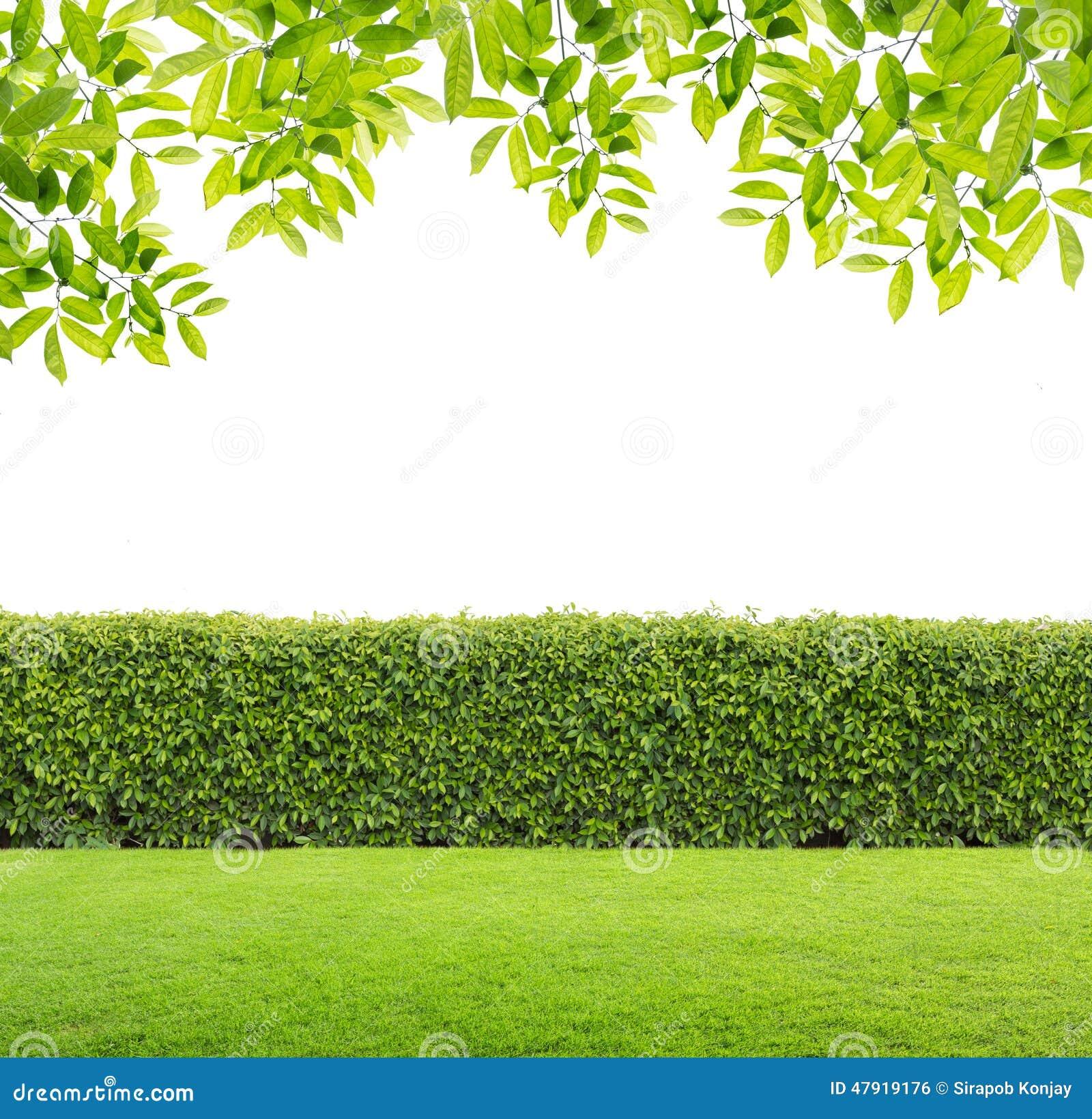 When to Hedge Portfolio