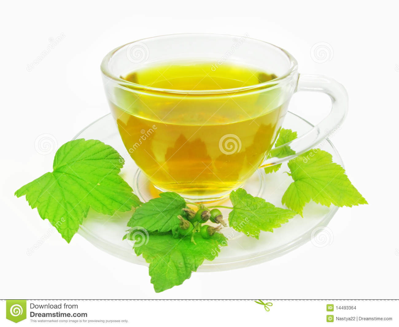Is green tea a herbal tea