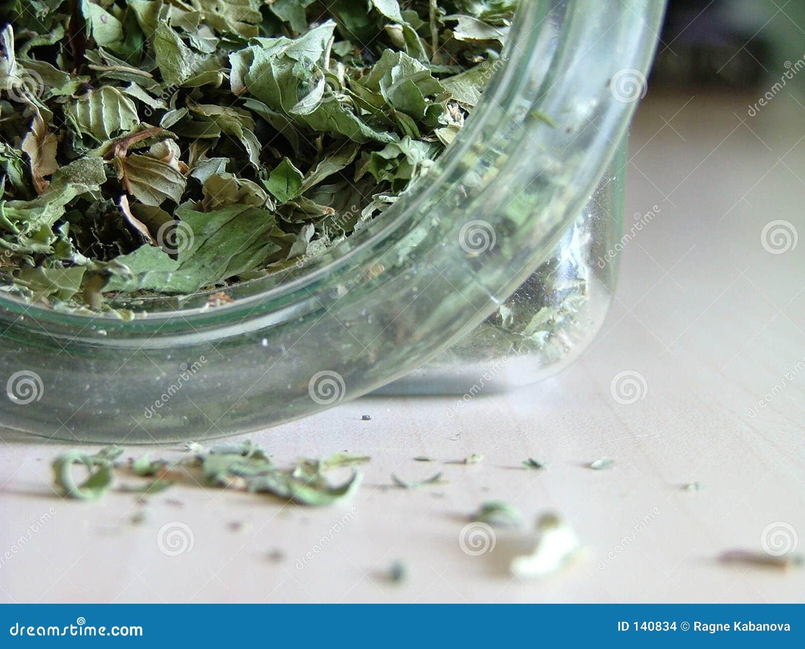 - green, herbatę
