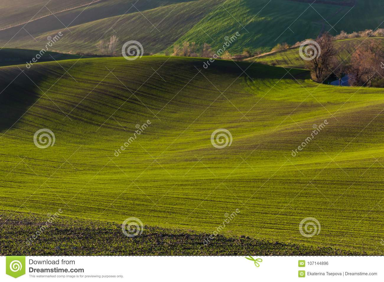 Green hills of Moravia