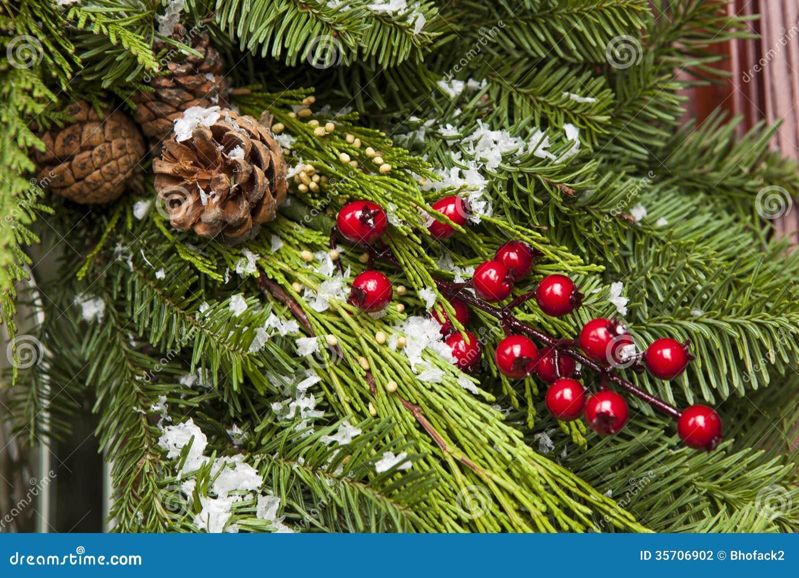 Evergreen Christmas.Green Holiday Christmas Decoration Stock Photo Image Of