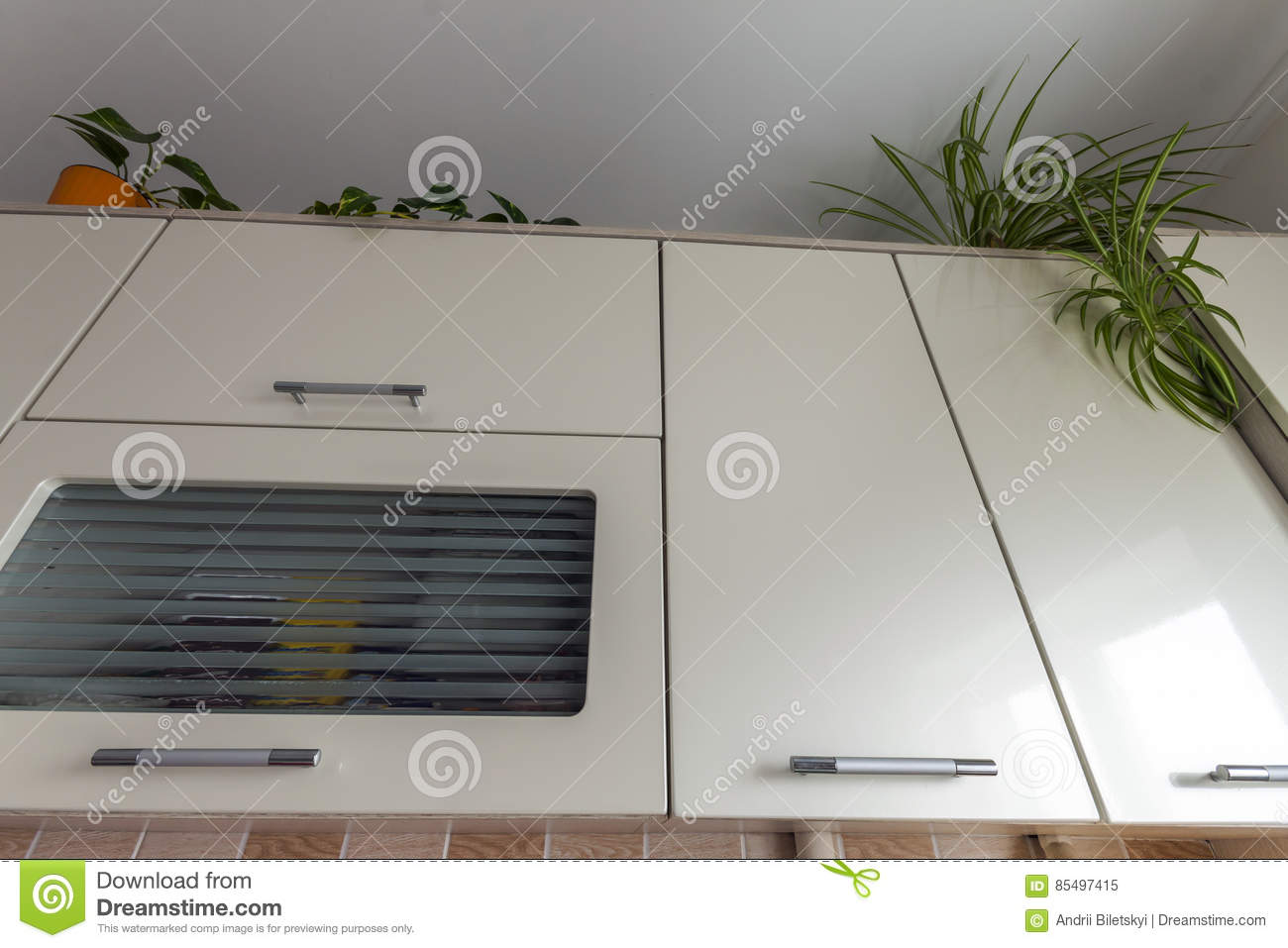 Green Home Plants On Top Of Modern Contemporary Kitchen Cupboard