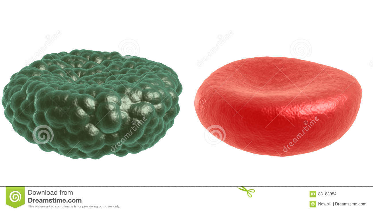 Green illness and red blood cell